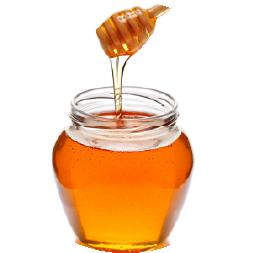 ハチミツエキス